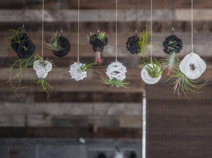 Radiolaria Papillae Planter 3d printed More hanging designs in this series