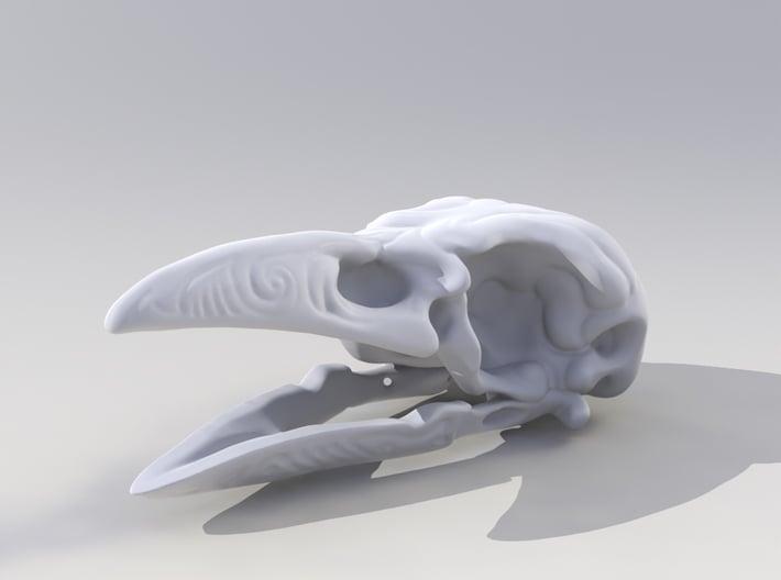 Skrimshaw Crowskull 3d printed Modo render