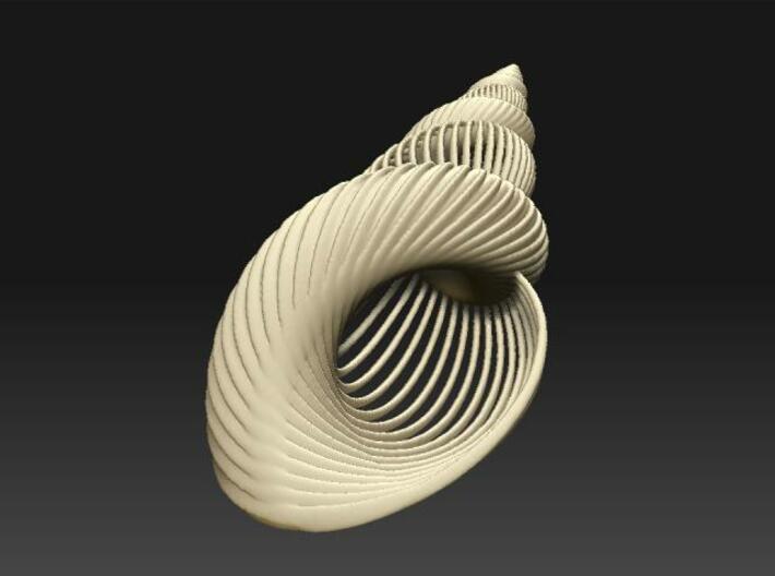 Fractal Conch -S1 3d printed Description