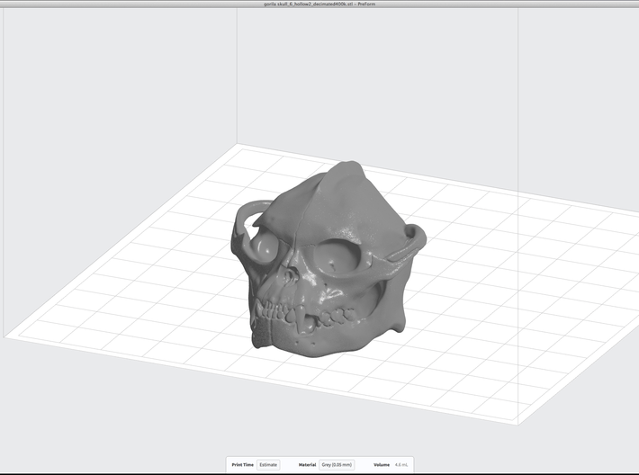 Skull 6 Hollow 2 3d printed A render using PreForm