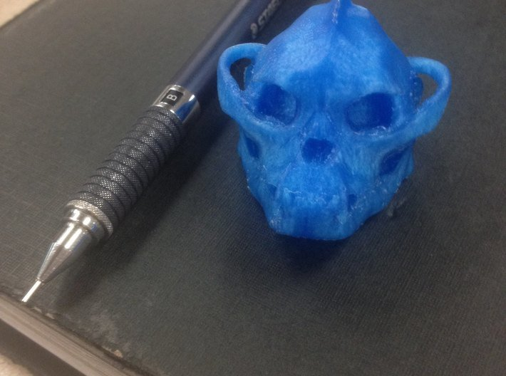 Skull 6 Hollow 2 3d printed Raw print from the Replicator 2
