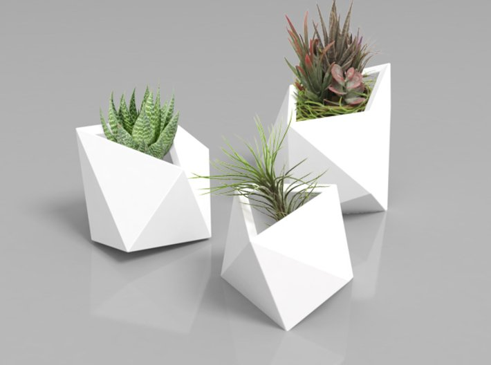 Poly Plant L 3d printed
