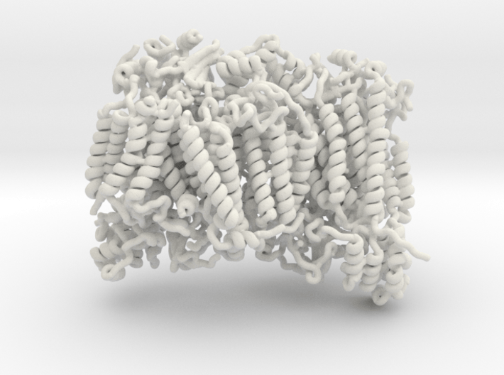 Cytochrome Oxidase 3d printed