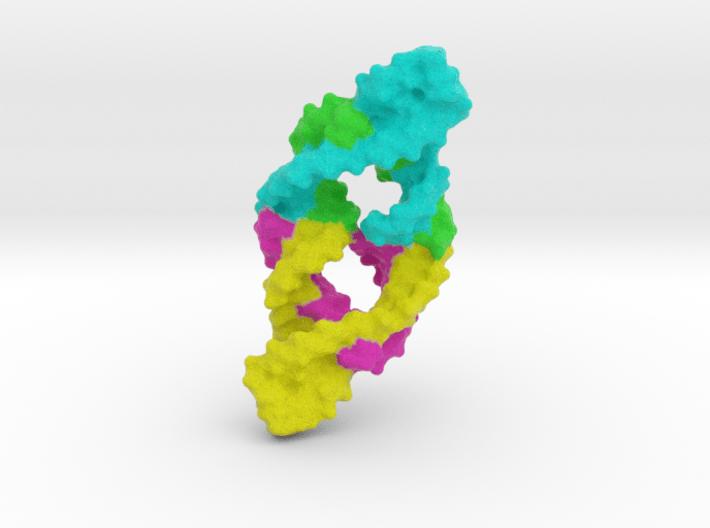 Hammerhead Ribosome 3d printed
