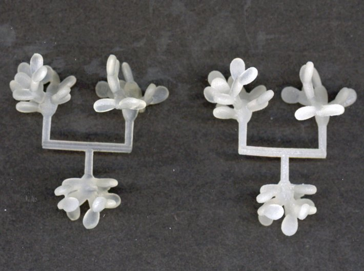 Z-Scale Prickly Pear Collection 01 3d printed Two prints in FUD and FD