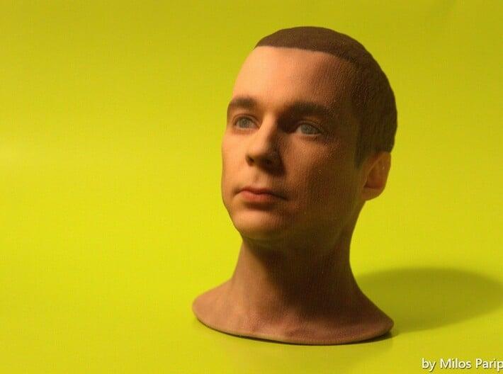 Sheldon Cooper - Jim Parsons - Scale 1/6 3d printed