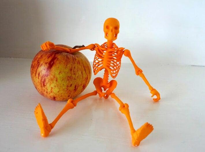 Articulated Skeleton  3d printed