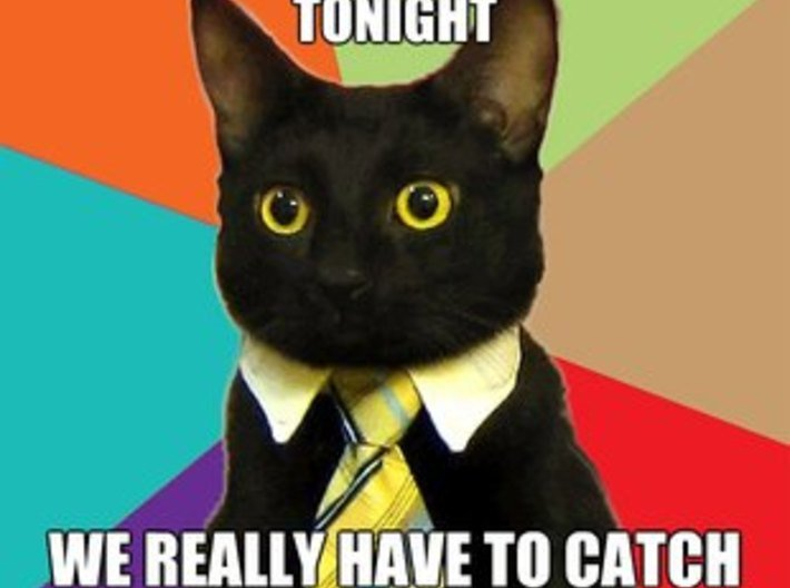 Business Cat 3d printed
