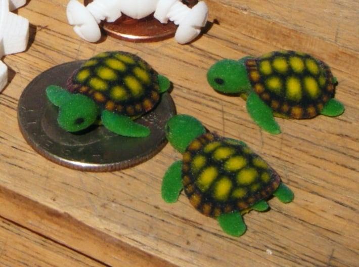 Concha: Little Turtle (1 piece) 3d printed 3 Full Color Sandstone Turtles