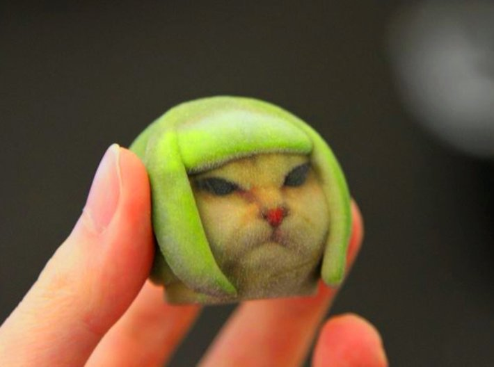 Lime Cat internet meme 3d printed lime cat meme