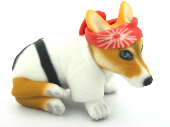 Karate Corgi  3d printed
