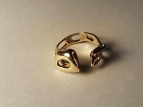 S3r026s7 GenusReticulum in Polished Brass