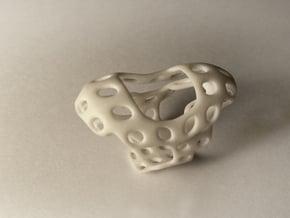 S4r011s7 GenusReticulum in White Processed Versatile Plastic