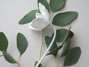 Poppy No. 3 in White Natural Versatile Plastic