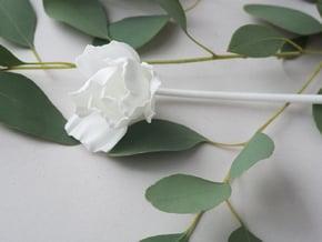 Poppy No. 5 in White Natural Versatile Plastic