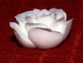 Rose Motif Small in White Processed Versatile Plastic
