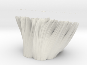 Ci == 0 in White Natural Versatile Plastic