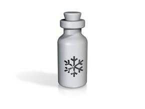 Small Bottle (snowflake) in White Processed Versatile Plastic