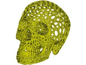 Human skull skeleton perforated sculpture in White Processed Versatile Plastic