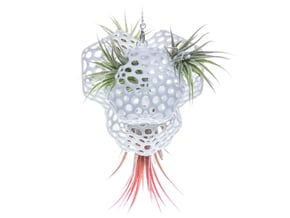 Radiolaria Tetrahedra Planter in White Natural Versatile Plastic