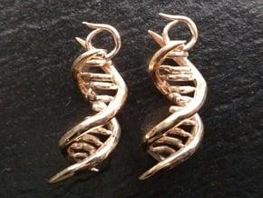 CeDNA in Polished Bronze
