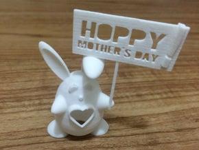 Buntitia -- Hoppy Mothers Day! in White Natural Versatile Plastic