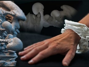 Slice of Spine - one Vertebra in White Natural Versatile Plastic