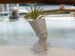 Nefertiti Mini Planter in White Natural Versatile Plastic