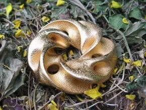 Seedpod of Tacañita  - mobius pendant /sculpture in Polished Gold Steel