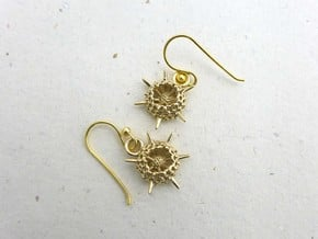Spumellaria Earrings - Science Jewelry in Polished Brass
