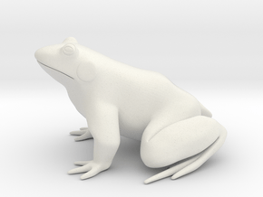 Frog, solid in White Natural Versatile Plastic