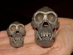Chimpanzee skull 52mm in Polished Bronzed Silver Steel