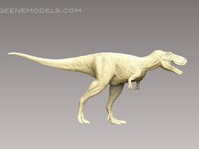 DInosaur Tyrannosaurus Juvenile Jane1:72 v1scaly in Smooth Fine Detail Plastic