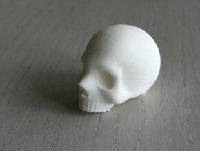 Skull Magnet  in White Natural Versatile Plastic