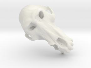 Bad Tooth Baboon in White Natural Versatile Plastic