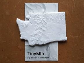 Washington Christmas Ornament in White Natural Versatile Plastic