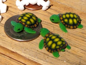 Little Turtle (3 pieces bundle) in Full Color Sandstone