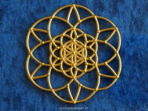 Fractal Flower of life  in Polished Gold Steel