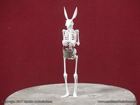 Easter Bunny Skeleton in White Natural Versatile Plastic
