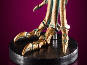 Allosaurus foot - left side, dinosaur model in White Natural Versatile Plastic: 1:12