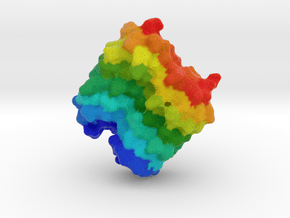 Beetle Antifreeze Protein in Full Color Sandstone