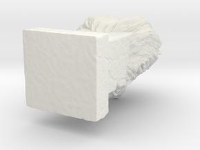 Lion in White Natural Versatile Plastic: 1:14