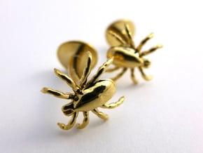 Tick Cufflinks - Nature Jewelry in Polished Brass