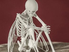 Fairy Skeleton in White Natural Versatile Plastic