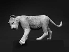 Lion 1:48 Cub reaching for something in Smooth Fine Detail Plastic