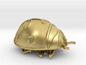 ladybug in Natural Brass