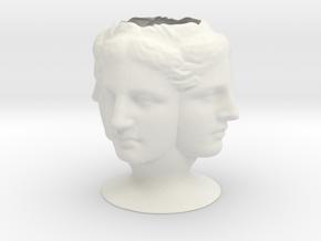 TetraVenus Vase in White Natural Versatile Plastic