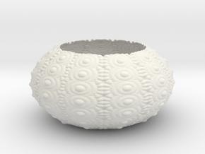 Sea Urchin Bowl in White Natural Versatile Plastic