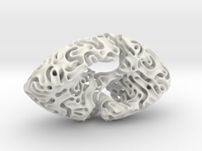 Reaction Diffusion Sculpture in White Natural Versatile Plastic