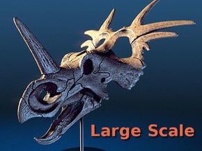 Styracosaurus - large scale dinosaur skull in White Natural Versatile Plastic: Small